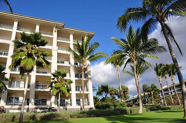 Palme e appartamenti, Maui - foto stock