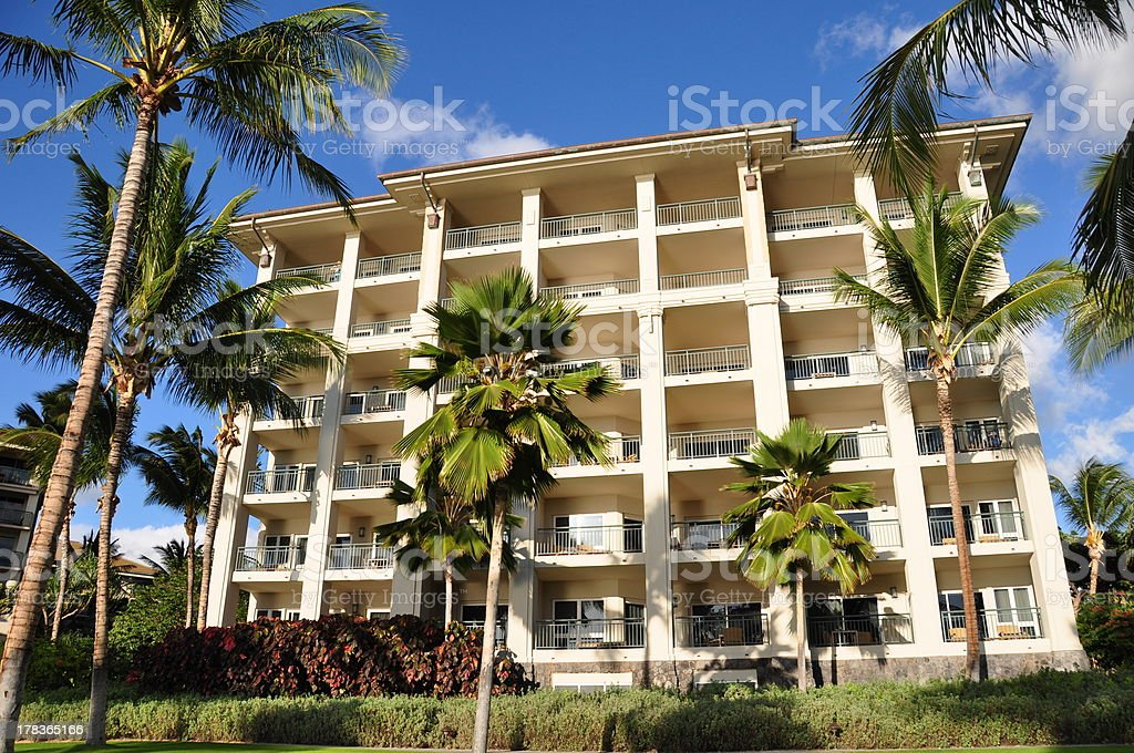 Palm trees and condos, Maui stock photo