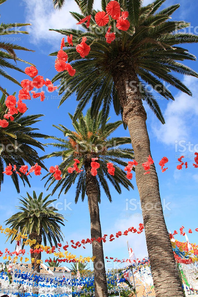 Palm trees and decoration for traditional party stock photo