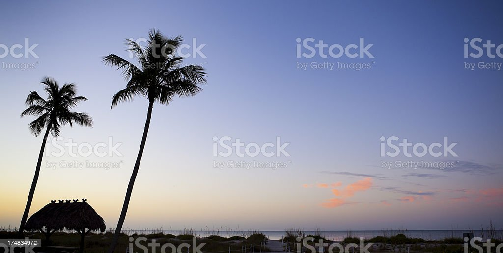 Palm trees and hut in early morning glow royalty-free stock photo