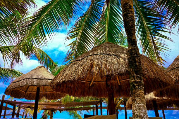 Palm trees and huts at a beach in Costa Maya, Mexico stock photo