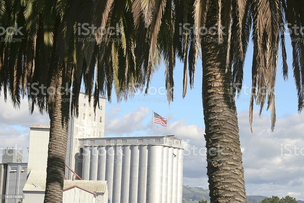 Palm Trees and Industry stock photo