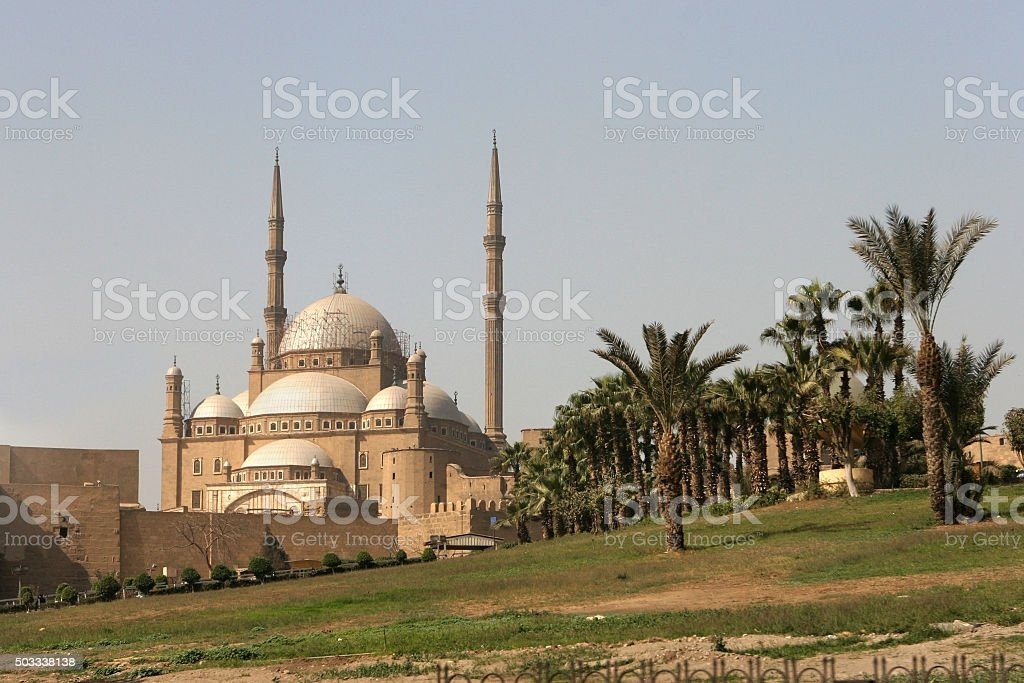 Palm trees and massive Mosque of Muhammed Ali Egypt stock photo