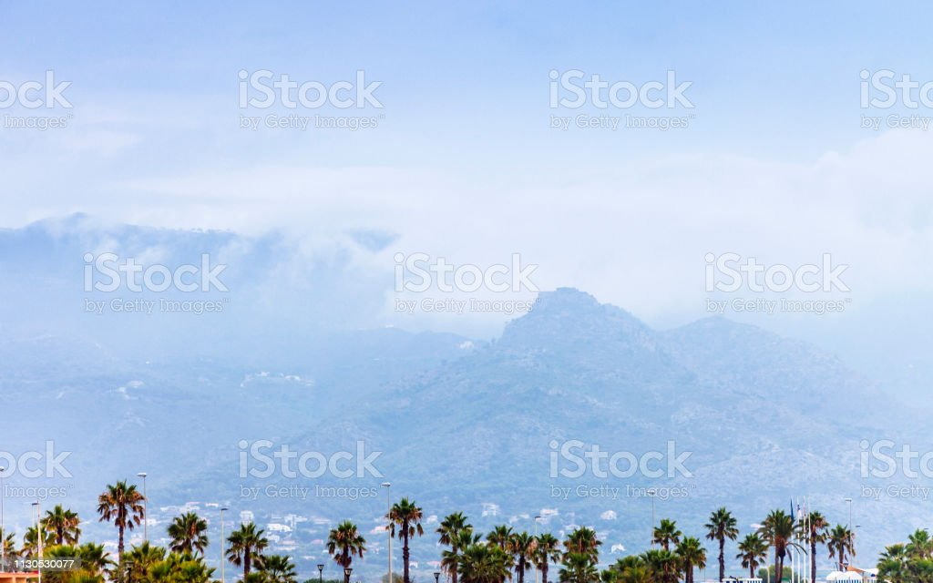 Palm trees and mountains - Benicassim, Spain stock photo
