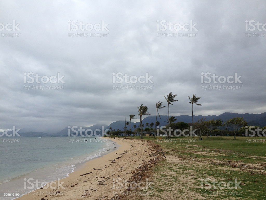Palm Trees and Mountains on Pacific Ocean Coast in Hawaii. stock photo