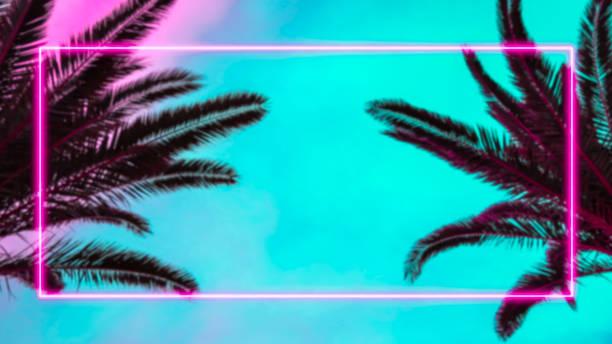 棕櫚樹和粉紅色的霓虹燈框架。 - 熱帶式樣 個照片及圖片檔