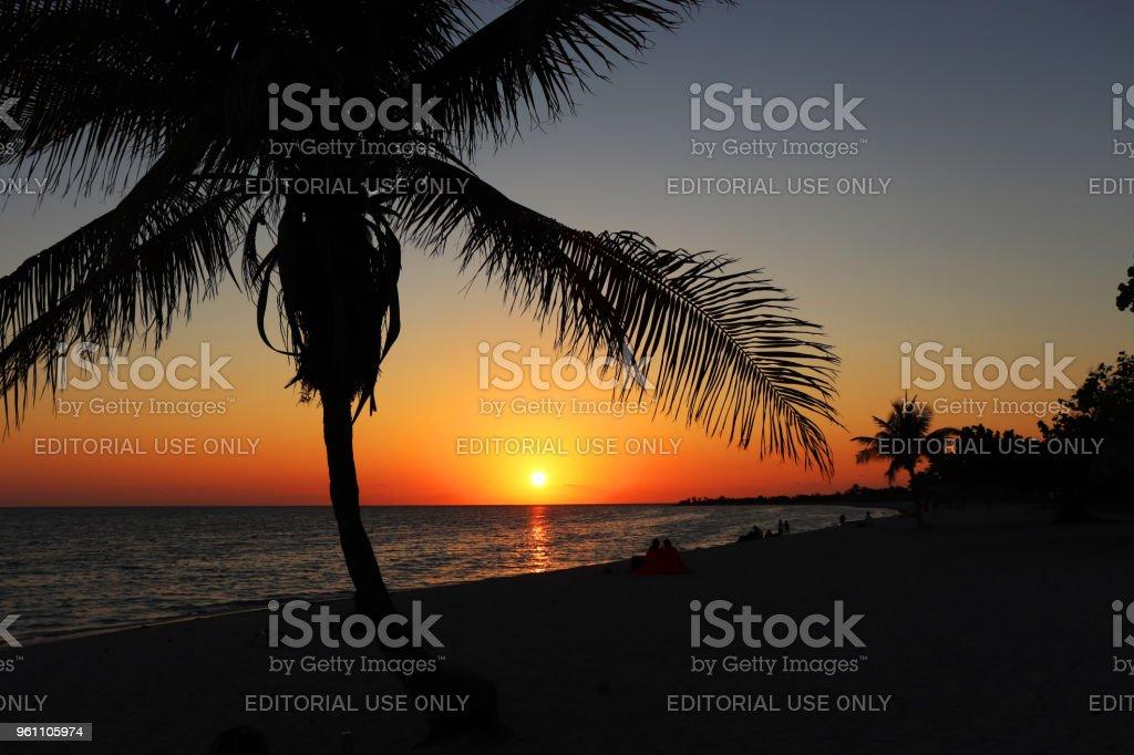 Palm Trees and Playa Ancon 2 stock photo