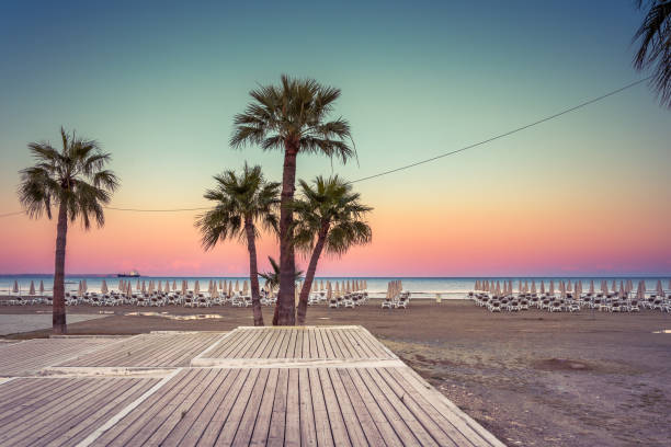 Palm trees and sunbeds at the sandy beach of Larnaca, Cyprus stock photo