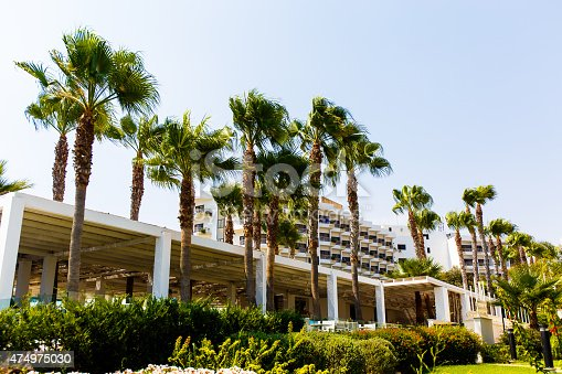 946294510 istock photo Palm trees and the hotel 474975030