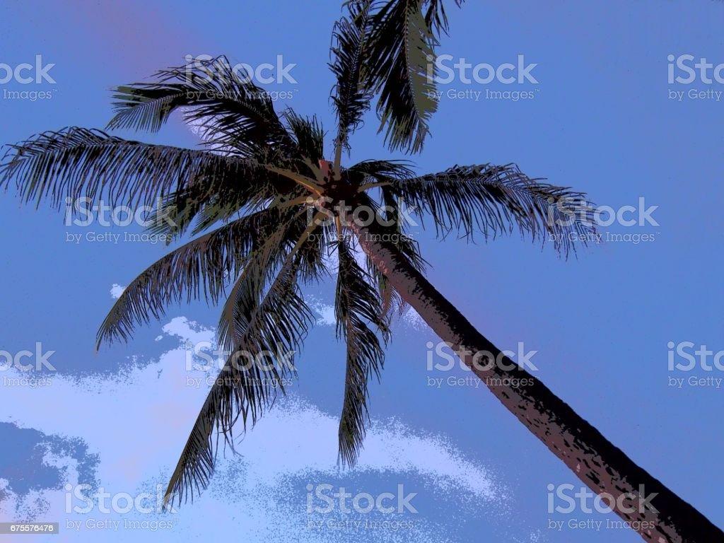 Palmiers et le ciel, style d'Illustration photo libre de droits