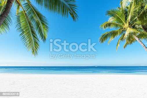 istock Palm trees and tropical beach background 865600518