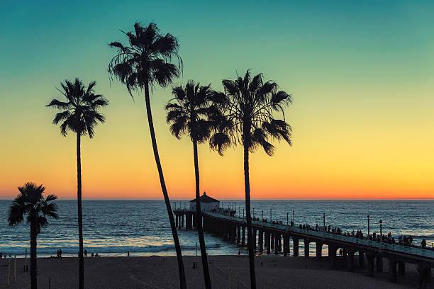palmen in manhattan strand. jahrgang bearbeitet - venice beach in kalifornien stock-fotos und bilder