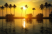 Sunset in Kerala. Clam cloudy and Orange moody sky , beautiful view of coconut tree during sunset