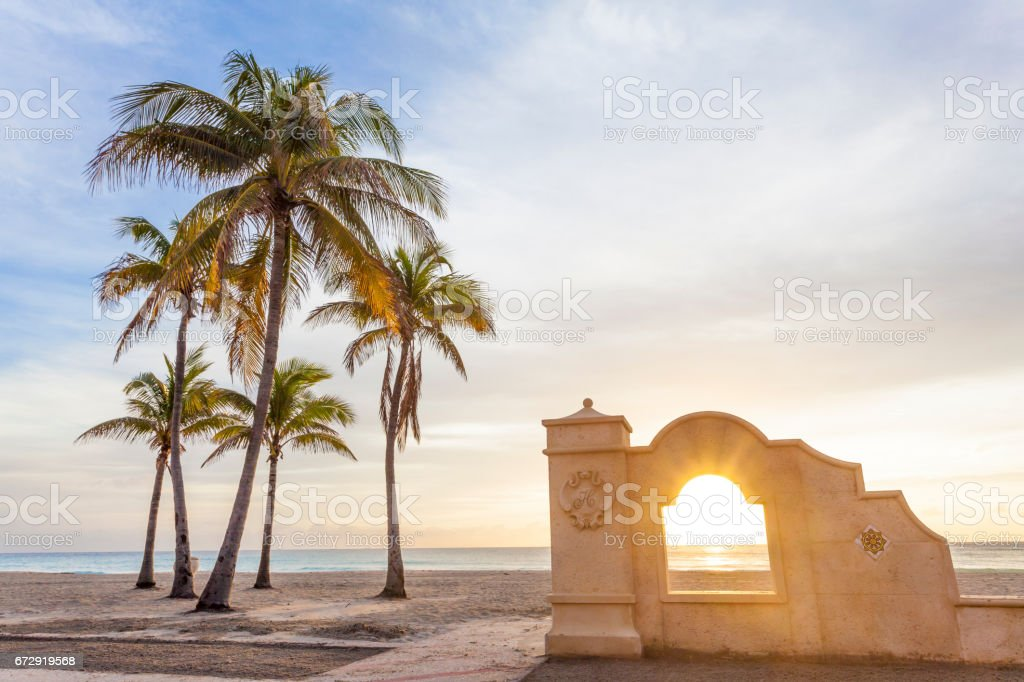 Palm trees at sunrise in Hollywood, Florida stock photo