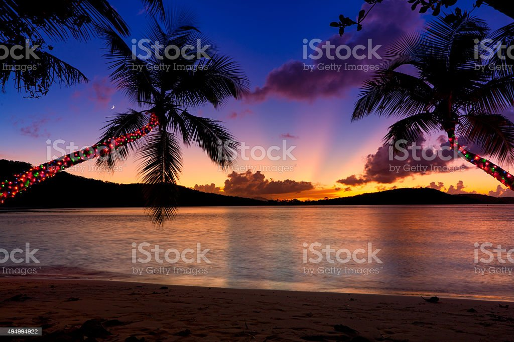 Palm Trees Deocrated With Christmas Lights Hanging Over A Beach Stock Photo
