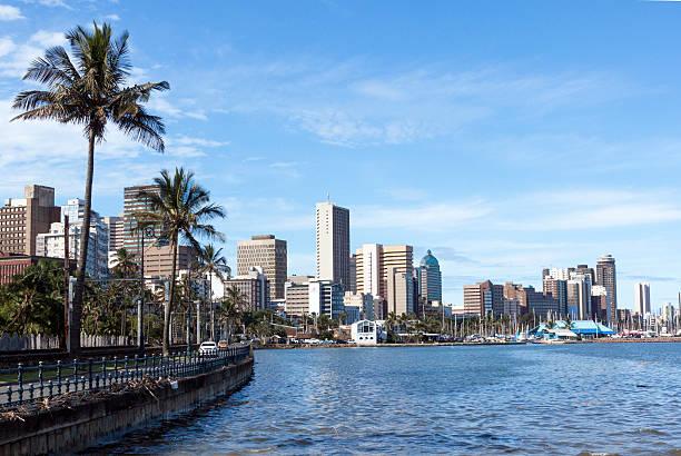 Palmen auf den Hafen und die Skyline von Durban – Foto