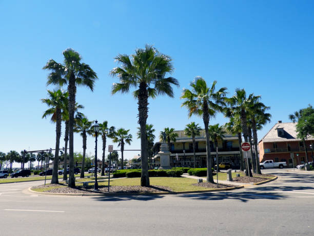 Palm Trees in St. Augustine Florida at Traffic Circle stock photo