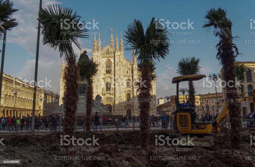 Milano, Italy - February 17, 2016: Palm trees installation at Duomo square. stock photo