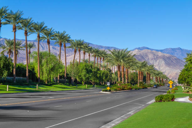 Palm trees line the landscape on California Highway 111 in the city of Indian Wells in the Coachella Valley stock photo