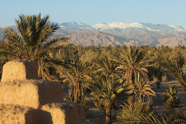 Palm Trees, Mountains and Kasbah stock photo