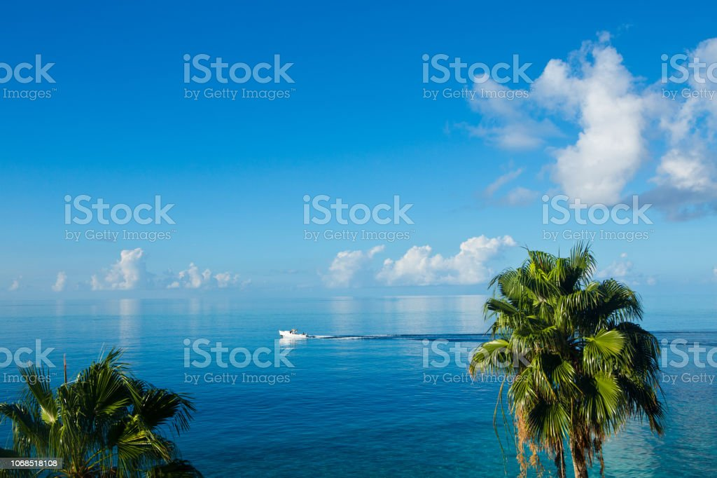 Palm trees ocean and boat in Aruba Caribbean stock photo