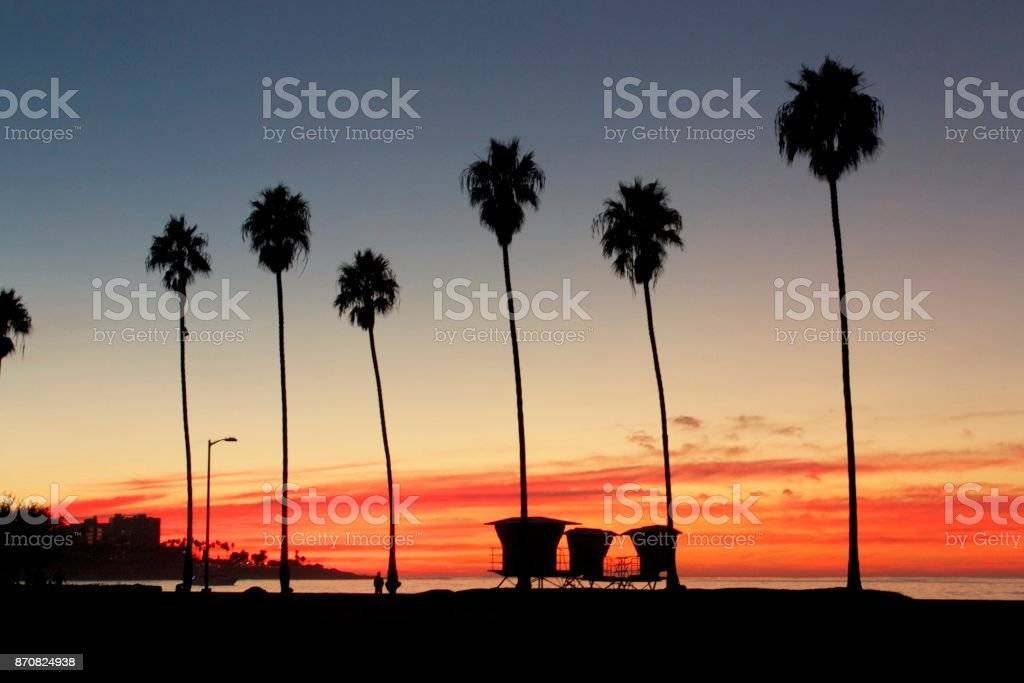 palm trees on a beach in California at sunset stock photo