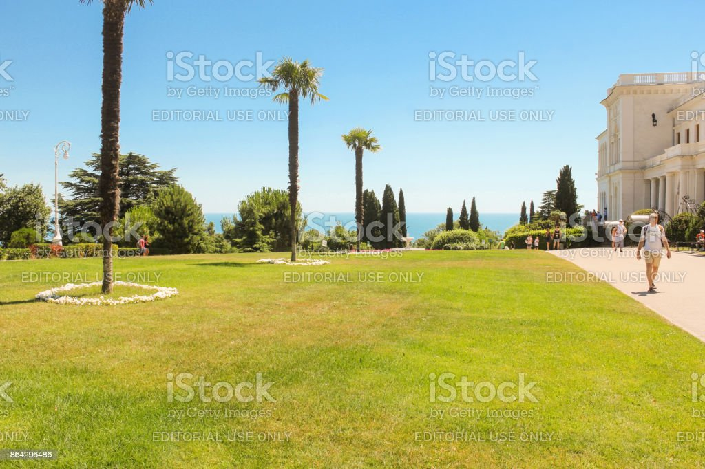 Palm trees on the lawn. royalty-free stock photo