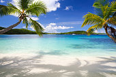 beautiful tropical beach in the Virgin Islands with palm trees on both sidesview my seascape images: