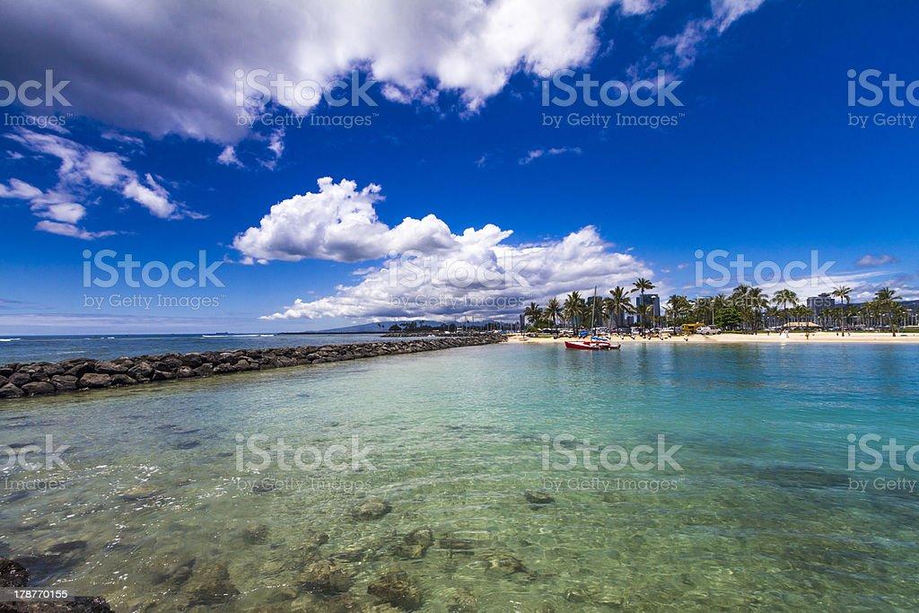 Palm trees on Wakiki beach Oahu Hawaii stock photo