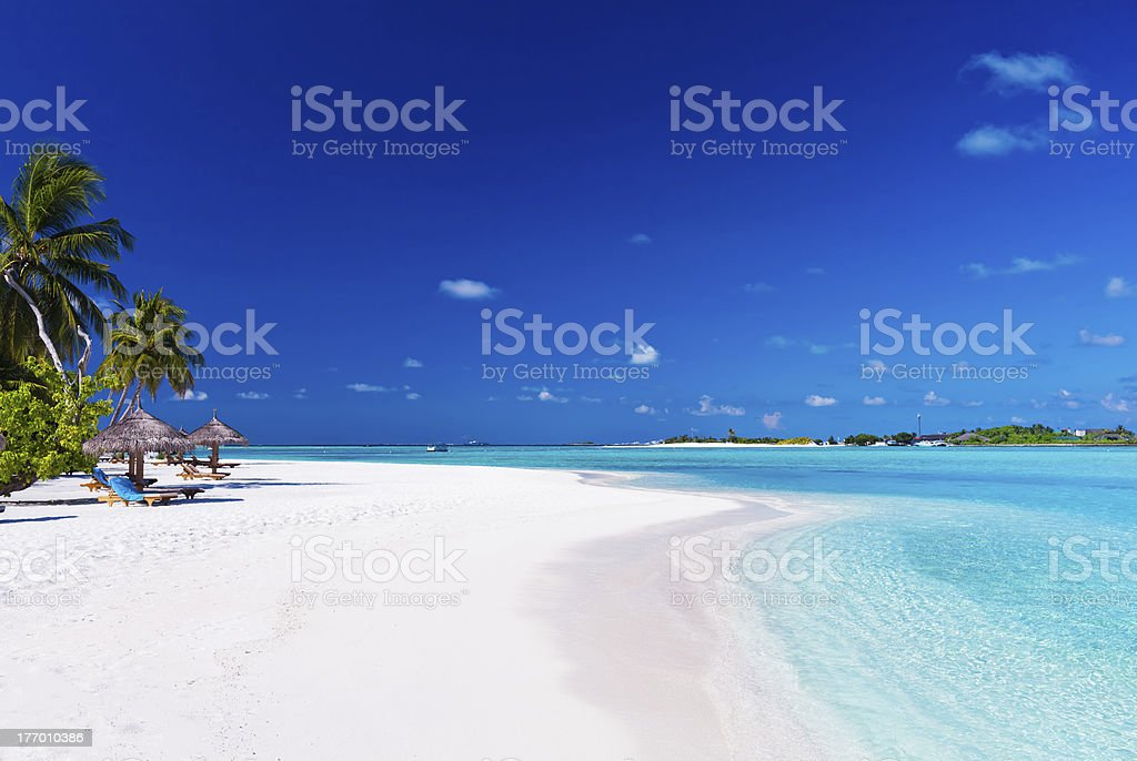 Palm trees over lagoon and white sandy beach royalty-free stock photo