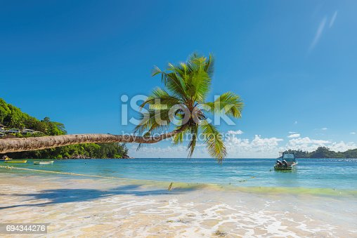istock Palm trees over the surf 694344276
