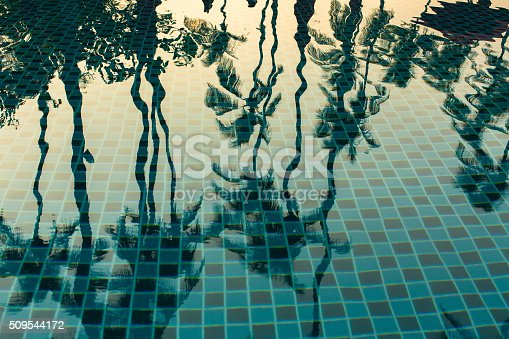 istock Palm trees reflected in the water of the pool. 509544172