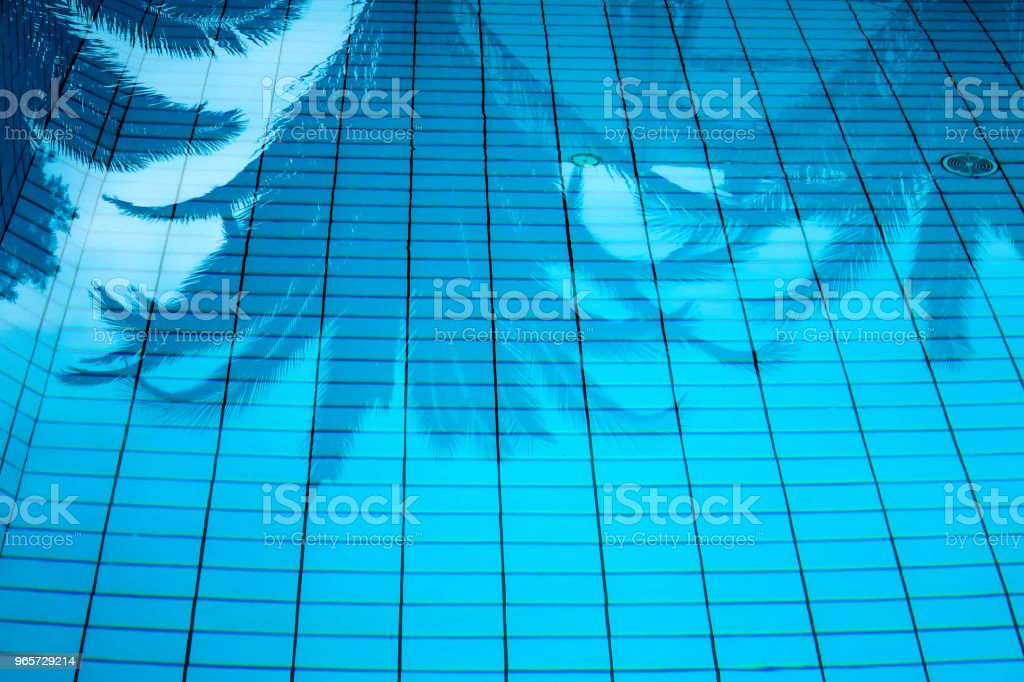 Palm trees reflected in the water surface of a swimming pool - Royalty-free Beauty Stock Photo