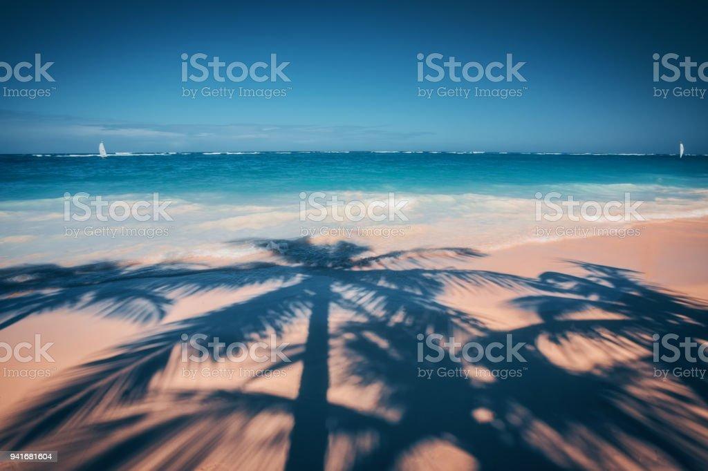 Palm trees shadow on the tropical beach, Bavaro, Punta Cana, Dominican Republic stock photo
