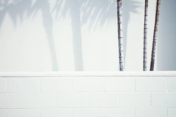 Palm trees shadows picture id182166394?b=1&k=6&m=182166394&s=612x612&w=0&h=trmal1ydbcvg f1pylpo5kwer j9useowobgwes54gy=