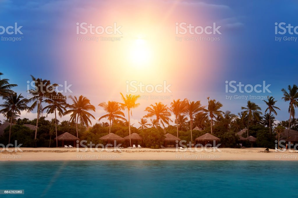Palm trees silhouette and a sunset over the sea royalty-free stock photo