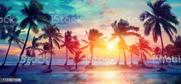 Photo of Palm Trees Silhouettes On Tropical Beach At Sunset - Modern Vintage Colors