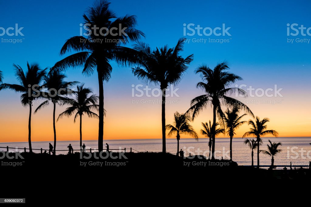 Palm Trees sunset at Cable Beach, Broome, Western Australia stock photo