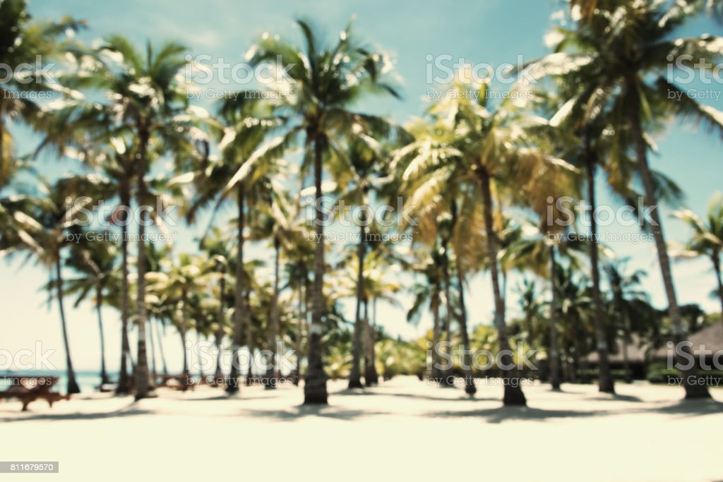 Palm Trees Vintage Effect Abstract Background Royalty Free Stock Photo