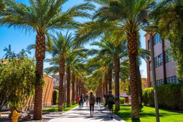 Palm Walk in ASU Tempe Campus stock photo