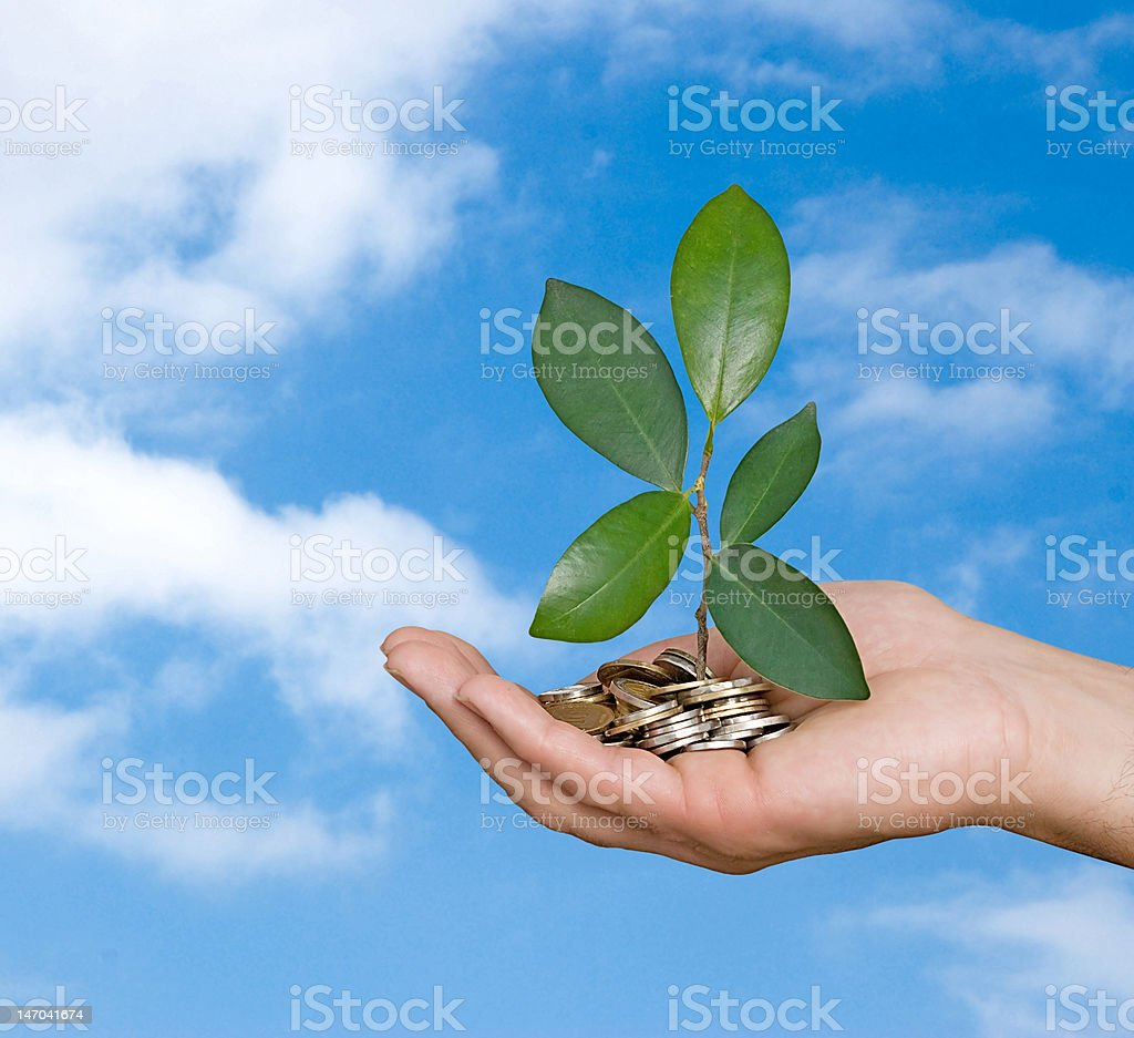 Palm with a sapling growing from pile of coins stock photo