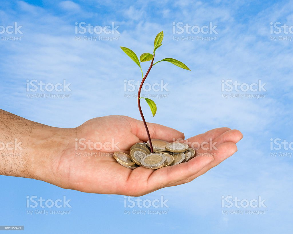 Palm with a sapling growng from pile of coins royalty-free stock photo