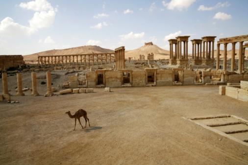 Foto de Palmira A Síria Сamel e mais fotos de stock de Arquitetura