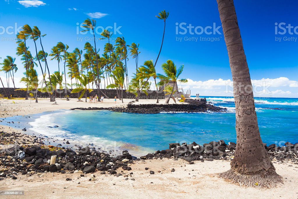 Palms and ancient Hawaiian dwellings stock photo