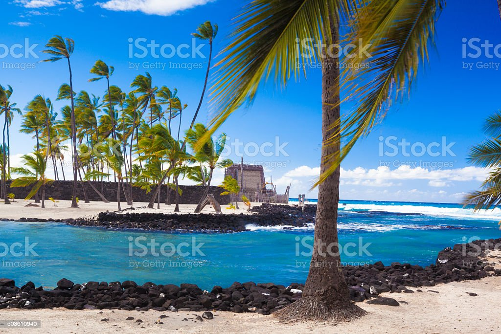 Palms and ancient Hawaiian dwellings stock photo