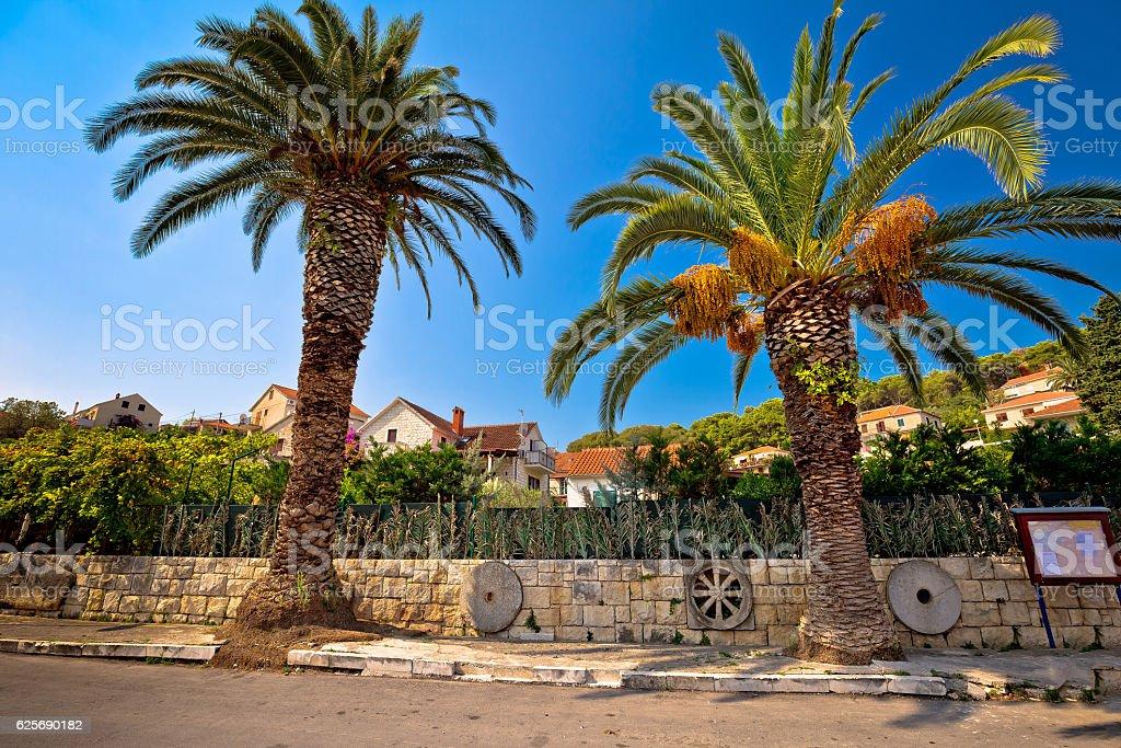 Palms and architecture of Splitska village stock photo