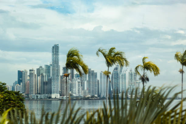 Palmen und Panoramablick auf die Wolkenkratzer in Panama, Panama, Panama, 2020 – Foto