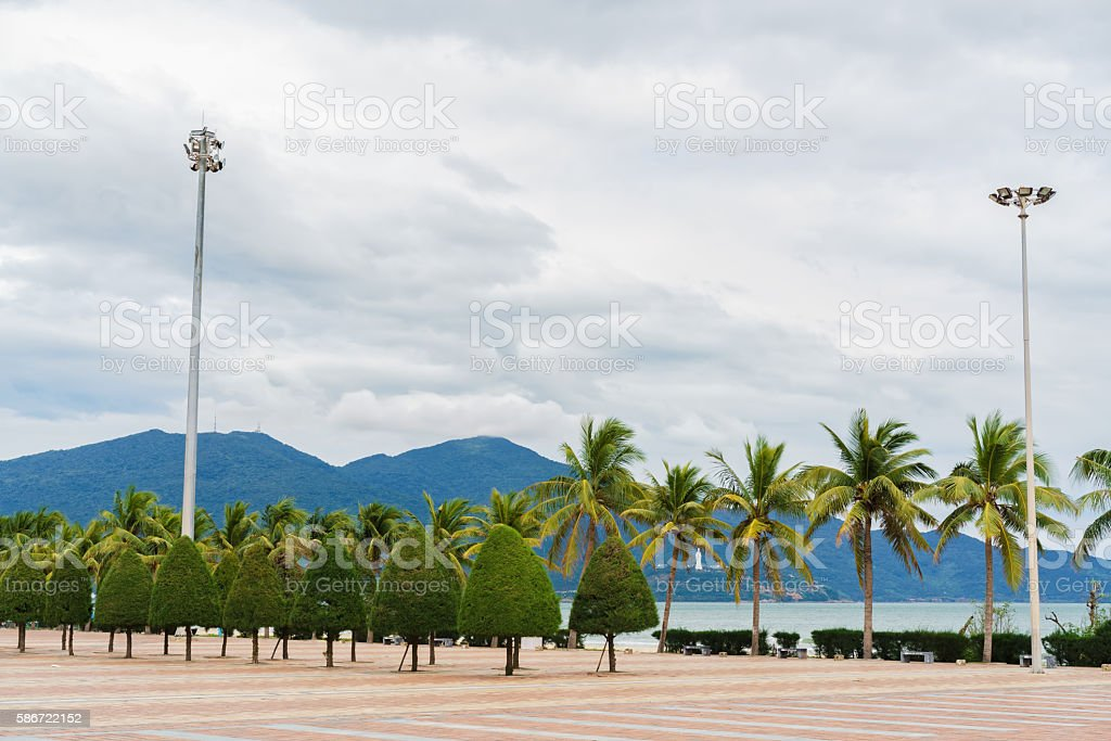 Palms and trees near China Beach in Danang in Vietnam stock photo