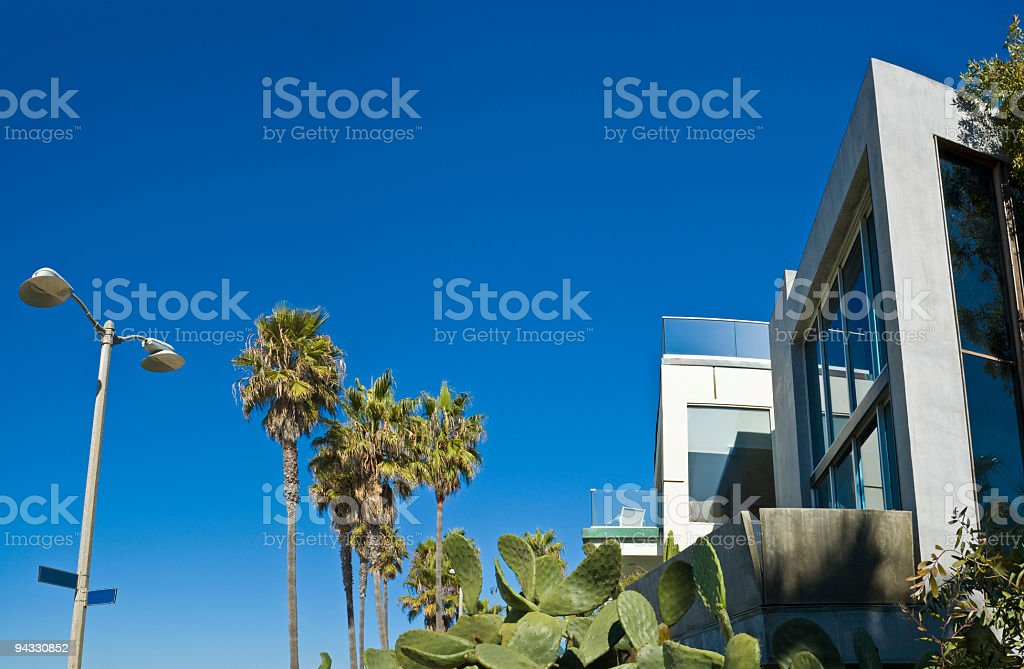 Palms, beach house and cactus royalty-free stock photo
