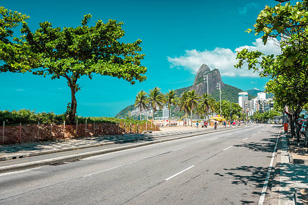 Palms on Ipanema Beach in Rio De Janeiro Palms on Ipanema Beach in Rio De Janeiro, Brazil. Vintage colors lagoa rio de janeiro stock pictures, royalty-free photos & images